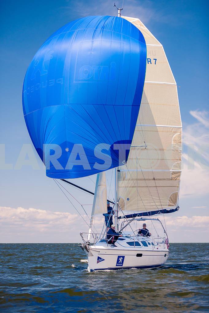 XII Sailing Regatta, — Image 13819