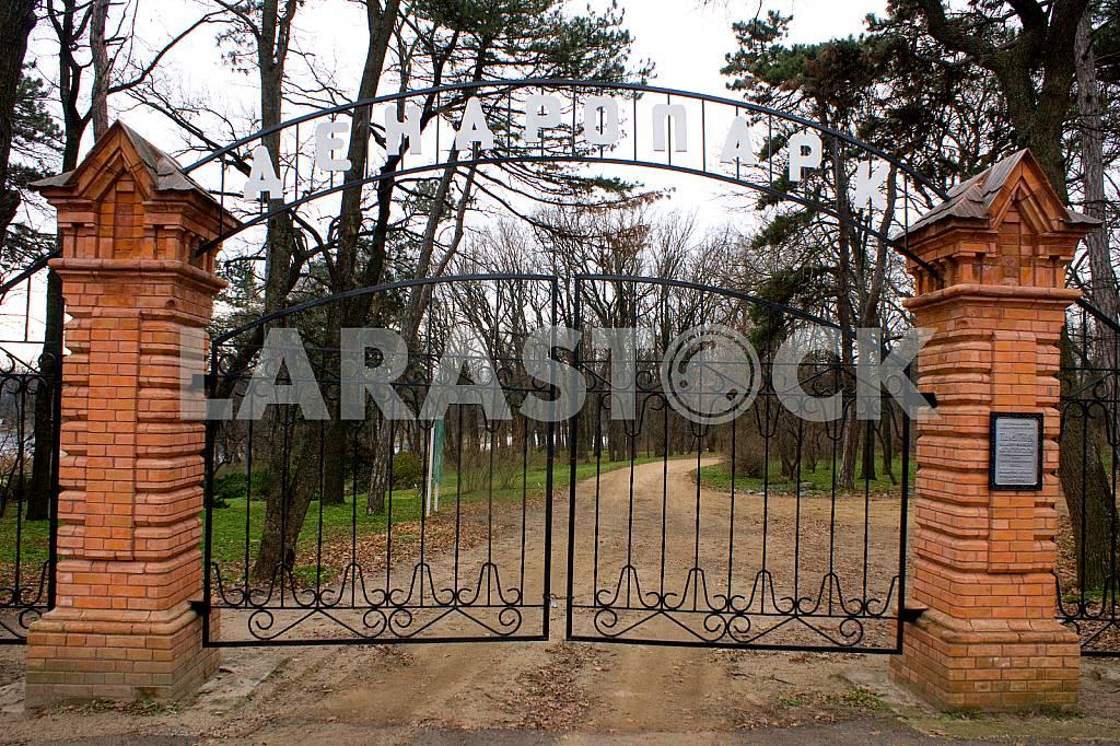 Dendropark Veselyye Bokoven'ki — Image 23079