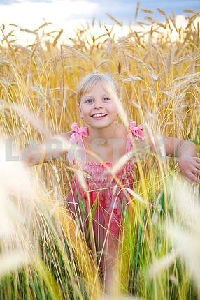 Little girl in a wheat field. Against backdrop of cloudy skies