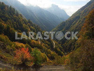 Autumn landscape in Kakheti