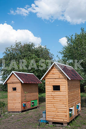 Single wooden house for apitherapy