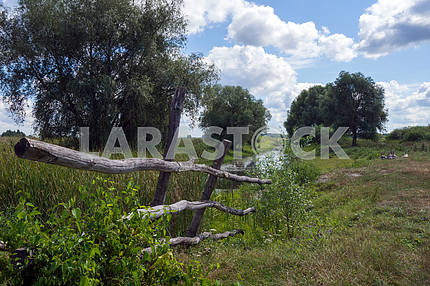 Wooden fence on the background of nature