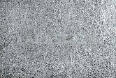 Gray wall texture with a spider web