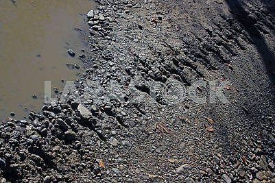 The track from the crawler tractor on a dirt road