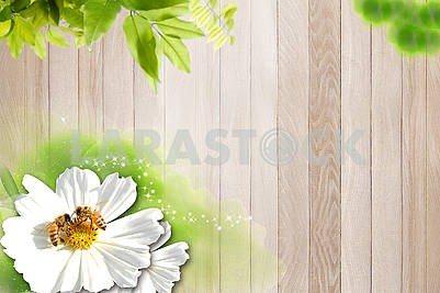Woody background, vertical wooden planks, green leaves, large white flower with two bees