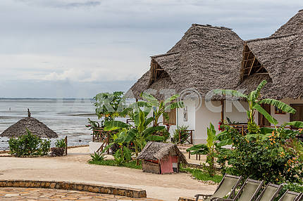 Building under thatched roof