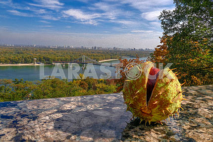 Autumn day on the Dnieper