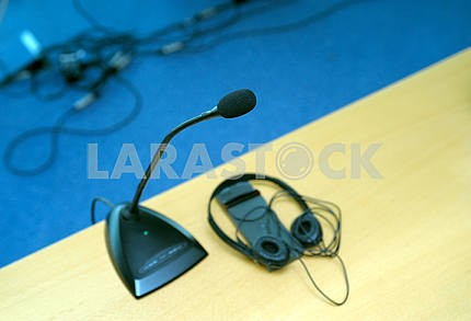 Microphone and translator