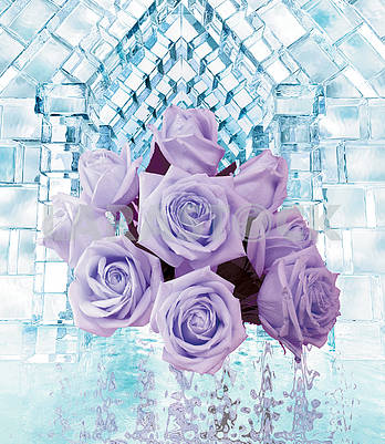 A bouquet of purple roses, blue ice cubes, reflected in water