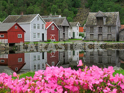 Flowers and wooden houses in Lerdale