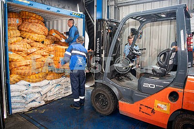 Cargo inspection at customs