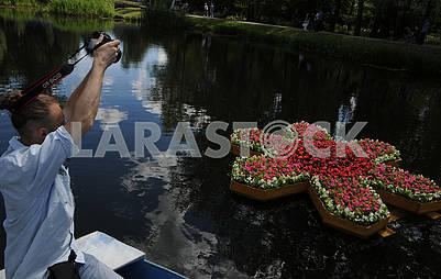 Flowerbed on the water