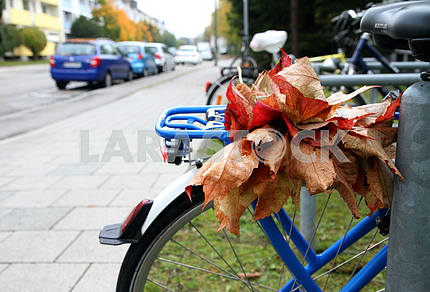 Autumn leaves on the trunk of a bicycle