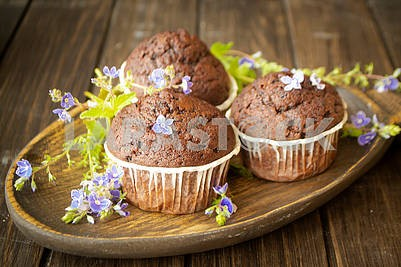 Close up of chocolate muffin cupcakes with blue spring flowers on dark wooden table