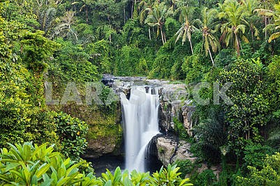 big waterfall in exotic tropical forest