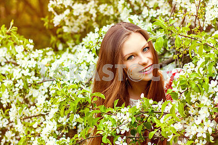 Portrait of a beautiful spring girl in tree flowers.