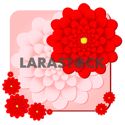 Background with red dahlias flowers