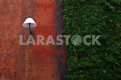 Modern street lamp and ivy on the wall