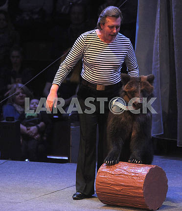 An animal trainer with a brown bear
