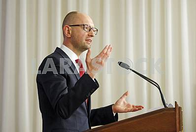 A press conference of Arseniy Yatsenyuk.