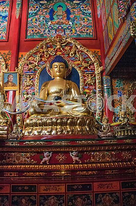 The Buddha statue of the Hall of ritual ceremonies of the nine-s