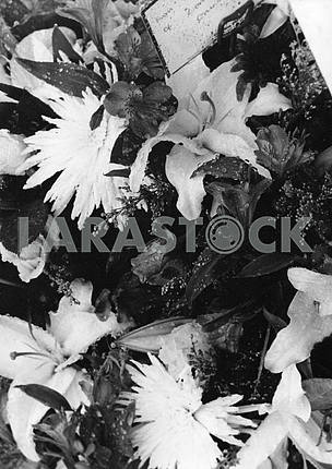 Black and White Flowers Texture