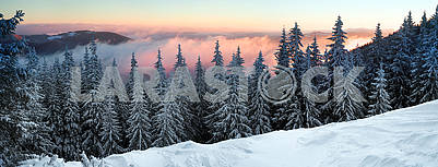 Frosty sunrise in Carpathians