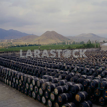 Storage barrels of port wine. Koktebel