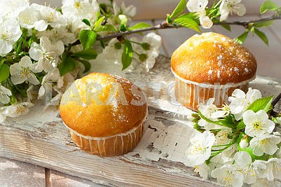 Mini muffins with cherriy flowers close up.