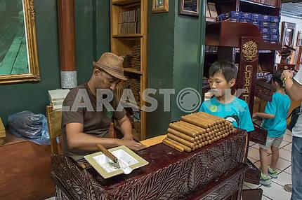 Folding cigars in tobacco store. Miami
