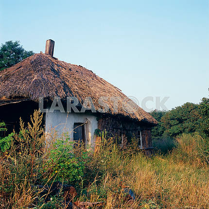 Wall Ukrainian huts covered with reeds