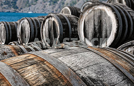 Rows of oak barrels