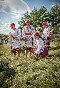 Girls on a holiday of Ivan Kupala