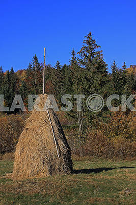 Haystack in glade after reap.