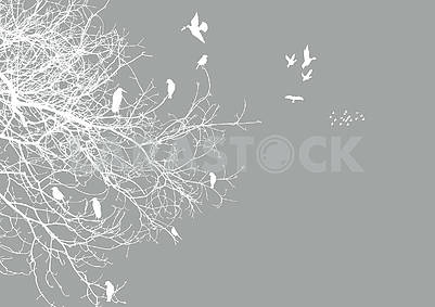 Gray background, white contours of a tree and contours of flying and sitting birds