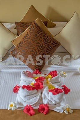 Flowers on the bed