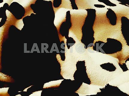 Cow Print Texture