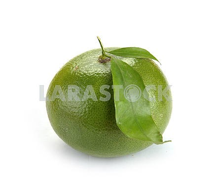 Citrus sweety fruit with leaves