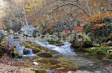 The mountain river in beechen autumn wood