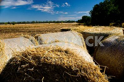 Roll of hay on the field, harvesting at the farm, hay on the background of sky, clouds in the blue sky, sunny autumn day, employment in agricultural activities, harvest on farmland