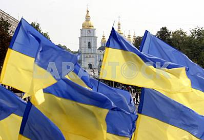 Celebrating the Day of the National Flag in Kiev