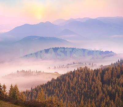 живописный дом в тумане