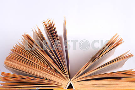 Open book on light table. Back to school. Copy space.