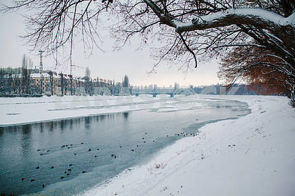 Winter in Uzhhorod