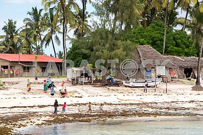 Residents of the island of Zanzibar during a low tide