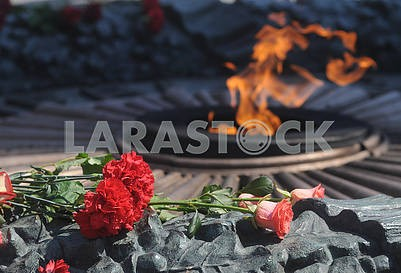 Carnations and roses at the Eternal Flame