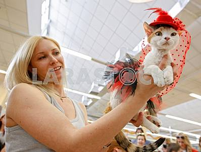 The exhibition of cats in Kiev
