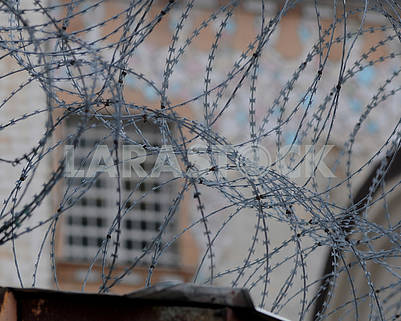 Barbed wire on the background of the prison window