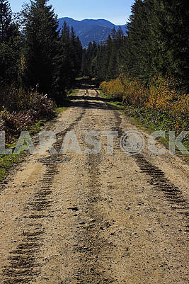 Tracks of a crawler tractor on a dirt road