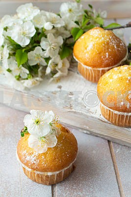 Mini muffins decorated with cherriy flowersc close up.